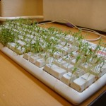 An alternative method to recycle keyboards