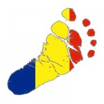 Ecological Footprint of Husi, Romania